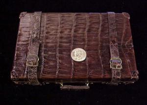 Alligator case 1-1